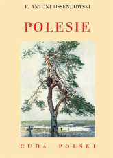 Polesie - Ossendowski Antoni Ferdynand | mała okładka