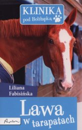 Klinika pod Boliłapką Lawa w tarapatach - Liliana Fabisińska | mała okładka