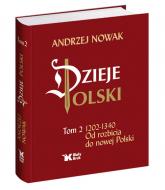 Dzieje Polski Od rozbicia do nowej Polski Tom 2 - Andrzej Nowak | mała okładka