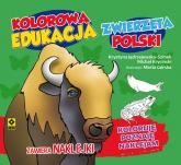 Kolorowa edukacja Zwierzęta Polski - naklejka -  | mała okładka