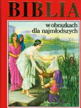 Biblia w obrazkach dla najmłodszych -  | mała okładka