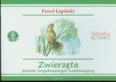 Zwierzęta parków krajobrazowych Lubelszczyzny - Paweł Łapiński | mała okładka