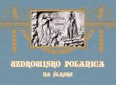 Uzdrowisko Polanica na Śląsku -  | mała okładka