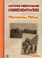 Płomienna północ - Ossendowski Antoni Ferdynand | mała okładka
