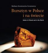 Bursztyn w Polsce i na świecie Amber in Poland and in the World - Barbara Kosmowska-Ceranowicz | mała okładka