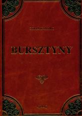 Bursztyny - Zofia Kossak   mała okładka