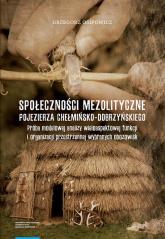 Społeczności mezolityczne Pojezierza Chełmińsko-Dobrzyńskiego - Grzegorz Osipowicz   mała okładka