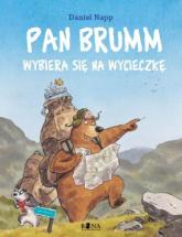 Pan Brumm wybiera się na wycieczkę - Daniel Napp | mała okładka