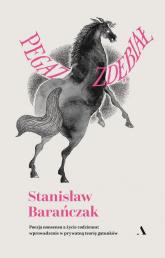 Pegaz zdębiał Poezja nonsensu a życie codzienne: wprowadzenie w prywatną teorię gatunków - Stanisław Barańczak | mała okładka