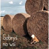 Gabryś na wsi - zbiorowa Praca | mała okładka