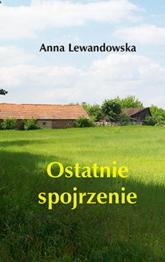 Ostatnie spojrzenie - Anna Lewandowska | mała okładka