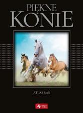 Piękne konie - Katarzyna Piechocka | mała okładka