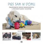 Pies sam w domu Zapobieganie lękowi separacyjnemu u dorosłych psów i szczeniąt - Kate Mallatratt | mała okładka