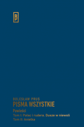 Pałac i rudera Dusze w niewoli Anielka - Bolesław Prus | mała okładka