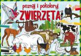 Poznaj i pokoloruj zwierzęta - Krzysztof Tonder   mała okładka