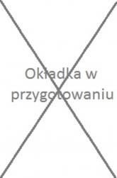 Huśtawka - Agnieszka Lis | mała okładka