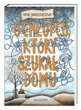O chłopcu który szukał domu - Irena Jurgielewiczowa | mała okładka