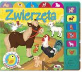 Odkrywam dźwięki Zwierzęta - Mirosława Kwiecińska | mała okładka