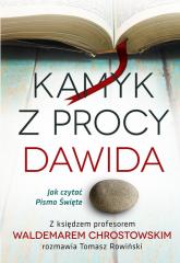 Kamyk z procy Dawida Jak czytać Pismo Św. - Chrostowski Waldemar, Rowiński Tomasz | mała okładka