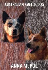 Australian Cattle Dog - Pol Anna M.   mała okładka