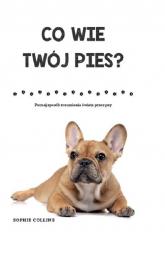 Co wie Twój pies? Poznaj sposób rozumienia świata przez psa - Sophie Collins | mała okładka
