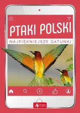 Ptaki Polski - Przybyłowicz Anna, Przybyłowicz Łukasz | mała okładka