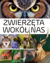Zwierzęta wokół nas Encyklopedia ilustrowana - Anna Skrok | mała okładka