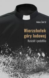 Wierzchołek góry lodowej Kościół i pedofilia - Adam Żak | mała okładka