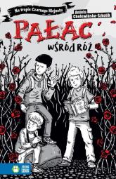 Na tropie Czarnego Klejnotu Pałac wśród róż - Aniela Cholewińska-Szkolik | mała okładka