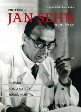 Profesor Jan Sehn (1909-1965) Prawnik, sędzia śledczy, łowca nazistów - Gańczak Filip, Litka Piotr | mała okładka