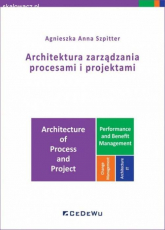 Architektura zarządzania procesami i projektami - Szpitter Agnieszka Anna | mała okładka