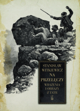 Na przełęczy Wrażenia i obrazy z Tatr - Stanisław Witkiewicz | mała okładka