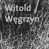 Witold Węgrzyn Nieuchwytna materialność - Witold Węgrzyn | mała okładka