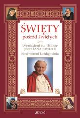 Święty pośród świętych Wyniesieni na ołtarze przez Jana Pawła II Nasi patroni każdego dnia - Hubert Wołącewicz | mała okładka