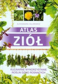 Atlas ziół Kulinarne wykorzystanie roślin dziko rosnących - Aleksandra Halarewicz | mała okładka