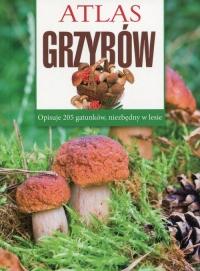 Atlas grzybów - Sławomir Sokół | mała okładka
