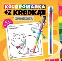 Kolorowanka z kredką Zwierzęta - Marcin Południak | mała okładka