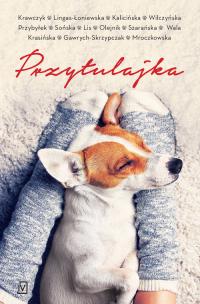 Przytulajka - pocket - Agnieszka Krawczyk, Agnieszka Lingas-Łoniewska, Małgorzata Kalicińska, Karolina Wilczyńska, Agata Pr | mała okładka