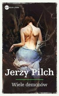Wiele demonów - Jerzy Pilch | mała okładka